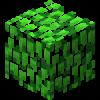 Leaves (Birch)